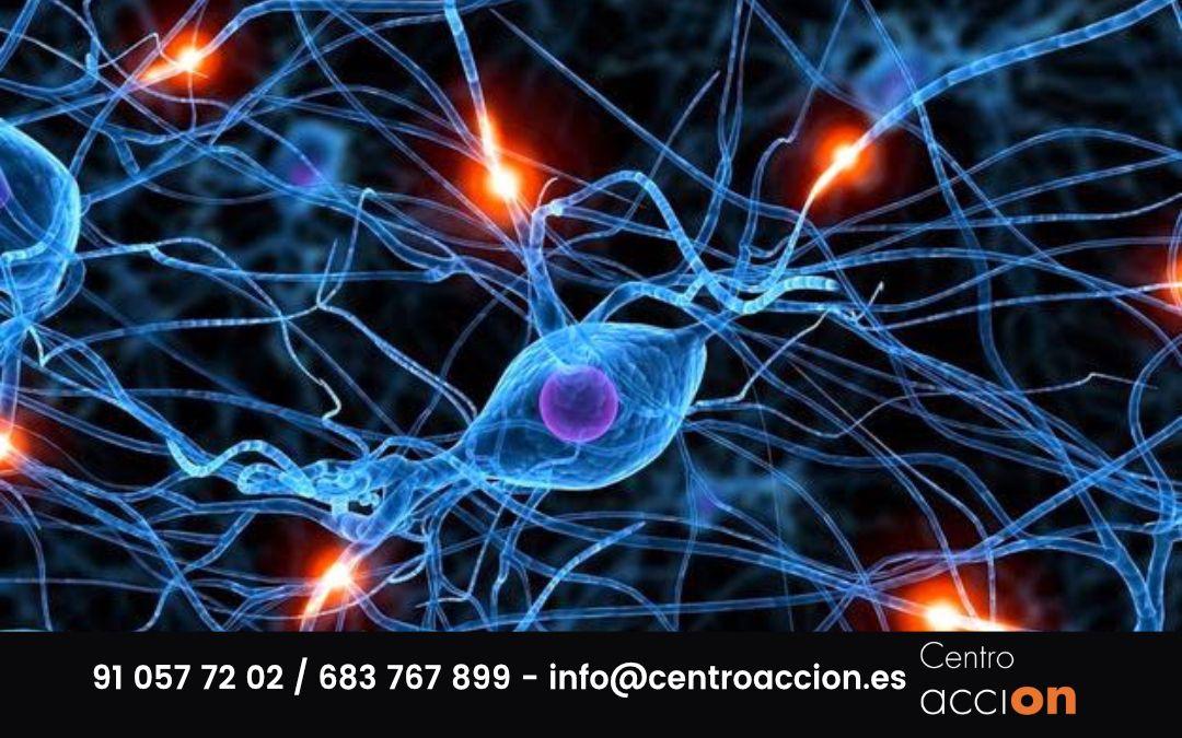Adicción y cerebro: ¿cómo afecta el consumo de drogas?